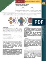 tallermeiosis-140627083628-phpapp01.pdf