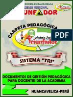 Carpeta Pedagógica...2017docx.docx11