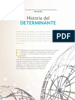 Historia Del Determinante