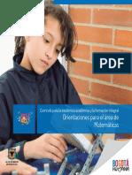 MATEMATICAS proyecto pedagogico.pdf