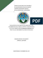 Informe Final de Investigacion, Herbicidas, Usac Cunsuroc