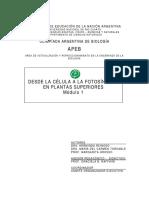 plantasTeoricoModulo1.pdf