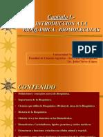 Capitulo i Bioquimica