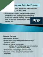 3. Sintesis Sukrosa, Pati, Dan Fruktan