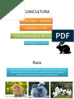 Cunicultura (2)