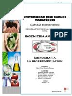 biorremediacion 1