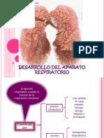 desarrollodelaparatorespiratorio-130220213206-phpapp01.pdf