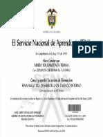 2009 Sena Siglo XXI