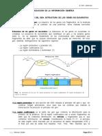16Traduccion.pdf