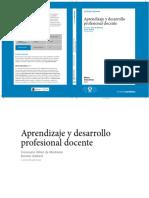 APRENDYDESARRPROFESIONAL.pdf