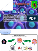PPT Stem Cell