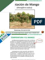 14 Plantacion Mango 18