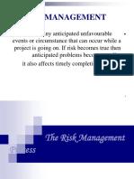 IIBM Risk 20feb