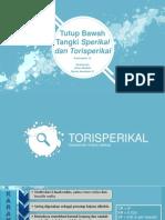 82914_KELOMPOK 12 Tutup Tangki Bawah Sperikal dan Torisperikal.pdf
