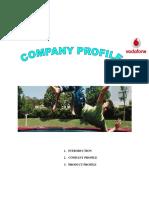 Vodafone Company Profile Chpter 2