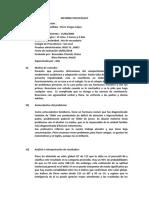 INFORME-Piero-final.docx