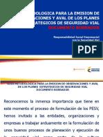 Presentacion Guia de Evaluacion Del Pesv