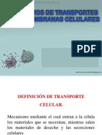 Transporte Activo y Pasivo Grado Septimo 2018