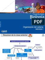 Clase 3 Organización del sistema nervioso I 2015.ppt