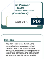 2347372 Peran Perawat Disaster Ppt