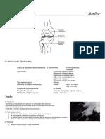 Cinesioterapia - Mobilização Articular Joelho e Perna.pdf