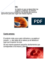 Diapositivas de Psico