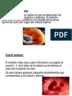 diapositivas de psico.pptx