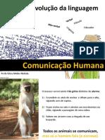 origem-e-evolucao-da-comunicacao-humana.pdf