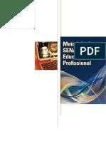 Livro MSEP.pdf