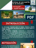 Mitigación y Adaptación