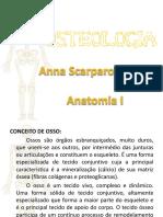 Apresentação osteologia.pptx