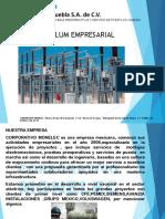 CV Corporativo Monelec