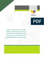 RutayprotocolodrogasFinal.pdf