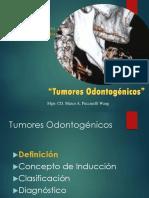 tumores odontogénicos a dictar - copia.ppt