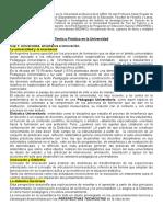 Lucarelli Teoria y Practica en La Universidad