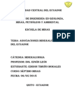 Asociaciones Mineralógicas_Timuño Edison