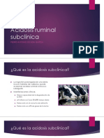 Acidosis ruminal subclinica