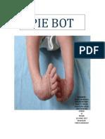 Pie Bot Informe