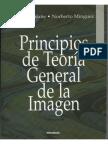Principios de La Teoria General de La Imagen