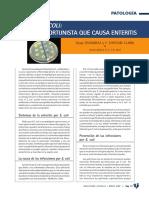 3700-escherichia-coli-un-oportunista-que-causa-enteritis.pdf