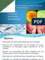 DERMATOFITOSIS-2011-1