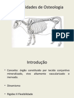 2 - CIS2728 - Generalidades de Osteologia