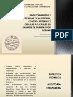 Procedimientos y Técnicas de Auditoria, Control Interno