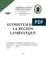 Eco Sistema