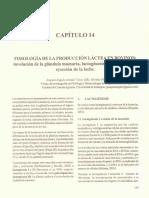 lactogenesis.pdf