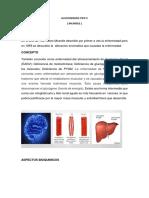 Glucogenosis Tipo V