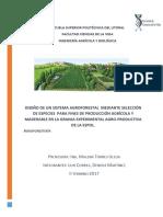 Proyecto Final Agroforestería