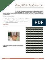 14. Crecimiento Fetal y RCIU