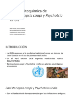 Marcha Fitoquimica de Banisteriopsis Caapi y Psychotria Viridis
