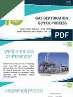 EXPO #5 - Deshidratación Por Glicol